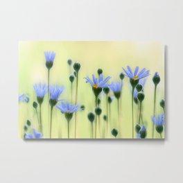 Summer flowers 215 Metal Print
