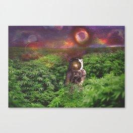 Planet Hemp Canvas Print