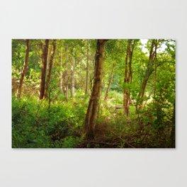 Surreal woodland Canvas Print