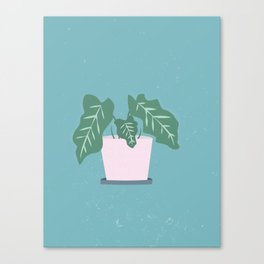 Grow Where Your Planted Canvas Print