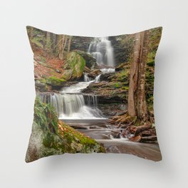Ricketts Glen Waterfall Layers Throw Pillow