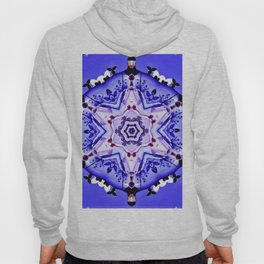Knights Of The Round Table Hoody
