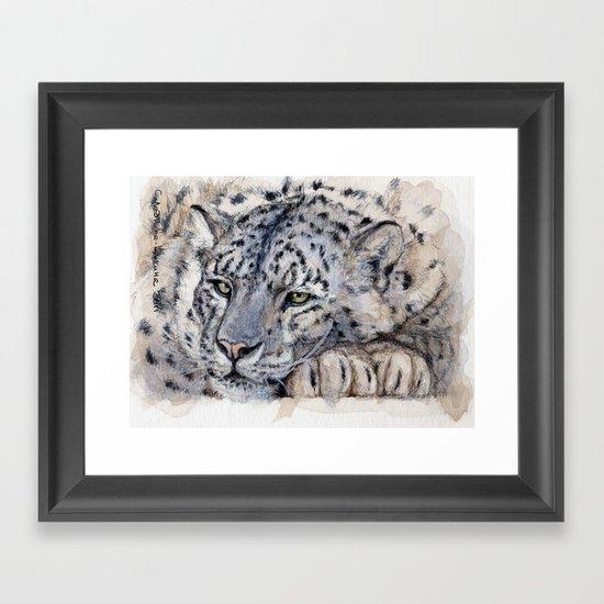 Snow Leopard Resting 778 Framed Art Print