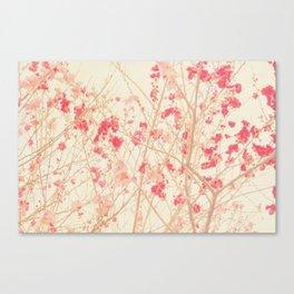 i heart spring peach blossoms botanical Canvas Print