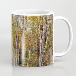 autumn trees in a marsh Coffee Mug