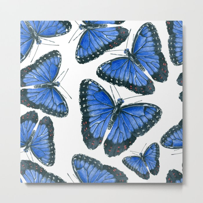 Blue morpho butterfly pattern design Metal Print