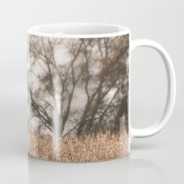 Sunset in the farm Coffee Mug