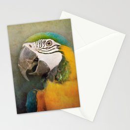 Portrait of a Parrot Stationery Cards
