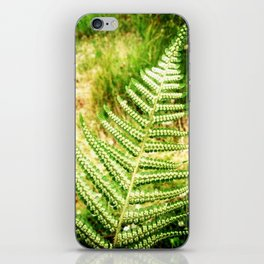 Green Fern iPhone Skin