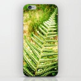 Green Fern iPhone Skin