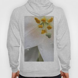 Raindrops on lily Hoody
