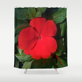 Red New Guinea Impatiens Shower Curtain