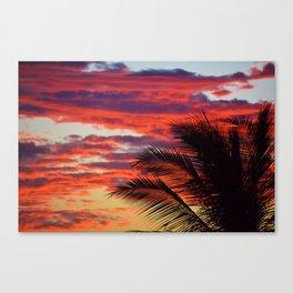 pomegranate sunset Canvas Print