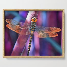 Dragonfly In Orange and Blue Serving Tray