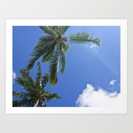 Palm trees, blue sky Art Print