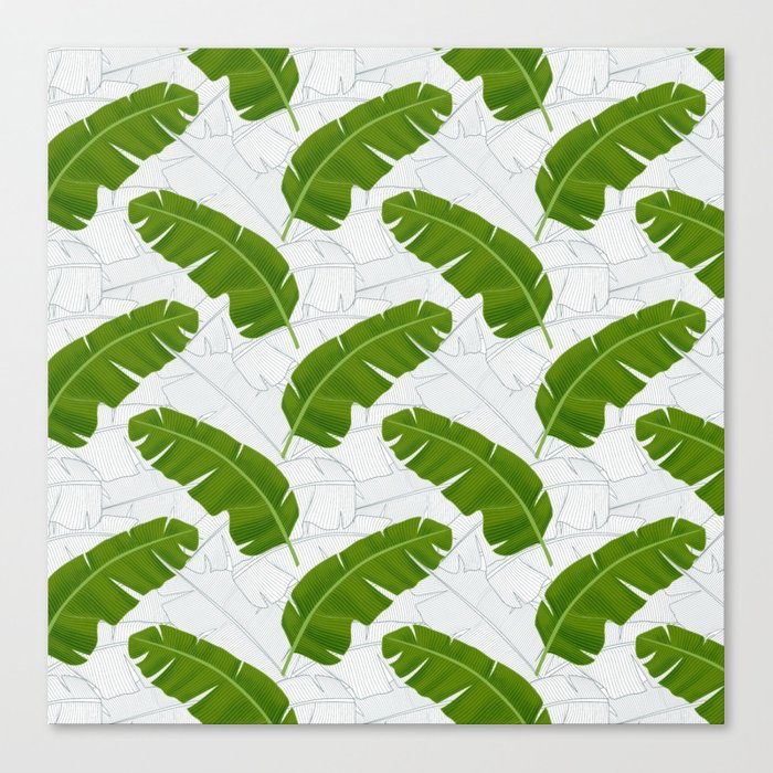 Banana Leaves_ Bg White Canvas Print