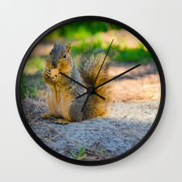 Chipmunk eating a cookie Wall Clock