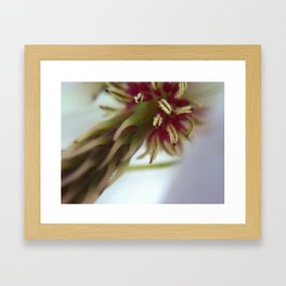 *Untitled Framed Art Print
