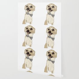 Chihuahua with Bow Tie Wallpaper