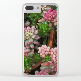Succulent Jewels Clear iPhone Case