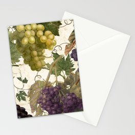 Marcella Stationery Cards