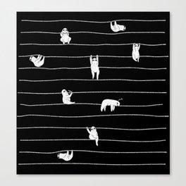 Sloth Stripe Canvas Print