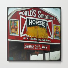 Worlds Smallest Horse Metal Print