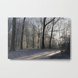 Wintersun Metal Print