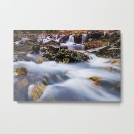 Deep in the woods there was a magic river Metal Print
