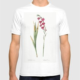 Bush cane  from Les liliacees (1805) by Pierre-Joseph Redoute T-shirt