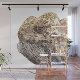 Chameleon With Sinister Facial Expression Isolated Wall Mural