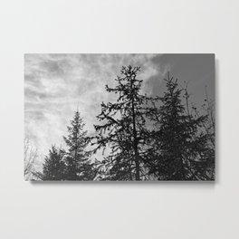 Mountain Trees, Black & White Metal Print
