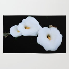 Three Calla Lilies Isolated On A Black Background Rug