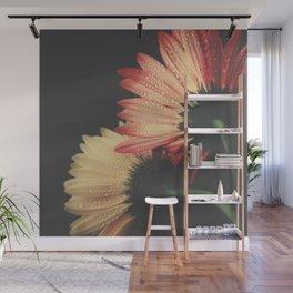 flowers III - Gerbera Daisies Wall Mural