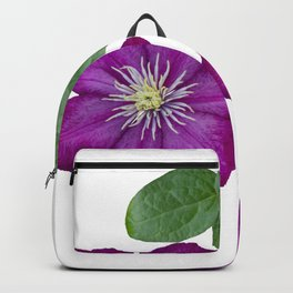 Purple clematis on a stem isolated on white background Backpack