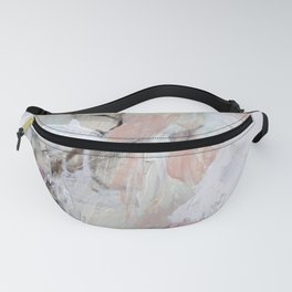 1 2 0 Fanny Pack
