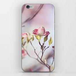 Pink Dogwood Flower Photography, Pastel Lavender Floral, Spring Nature Art iPhone Skin