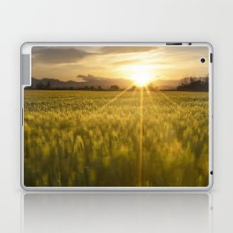 Sunset over a wheat field Laptop & iPad Skin