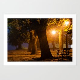 Foggy evening in the park Art Print