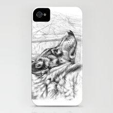 Wolf in woods G082 Slim Case iPhone (4, 4s)