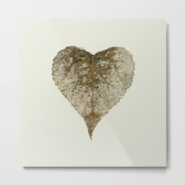 heart nature Metal Print