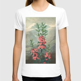 Pink Floral The Narrow-leaved Kalmia : Temple of Flora T-shirt