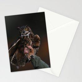 owl bird photo Stationery Cards
