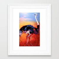 ostrich Framed Art Prints featuring Ostrich by Vicki Lynn Rae