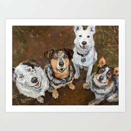 Cattledogs Happy Heelers And Mutts On The Trails Art Print