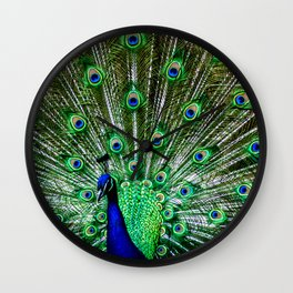 The peacock of Hellabrunn Wall Clock
