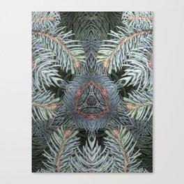 Ancient Yule Tree Canvas Print