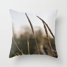 it's time I had some time alone... Throw Pillow