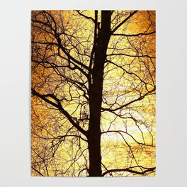 Tree Silhouette At Sunset #decor #society6 Poster