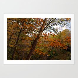 Fall in the Cuyahoga Valley National Park Art Print